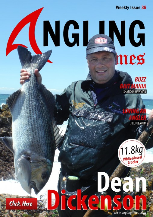 Issue  COVER 36 small