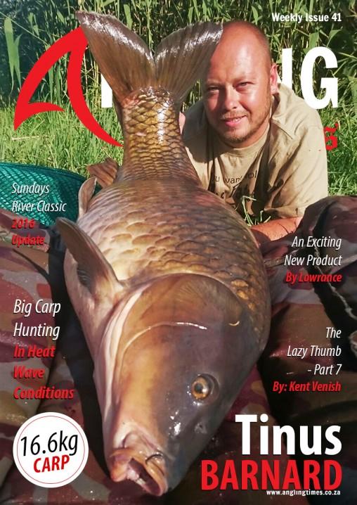 Cover 41 small