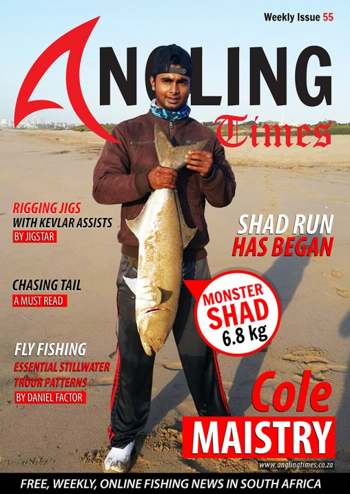 Issue  COVER 55 small